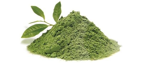 lina-levien-matcha-green-tea