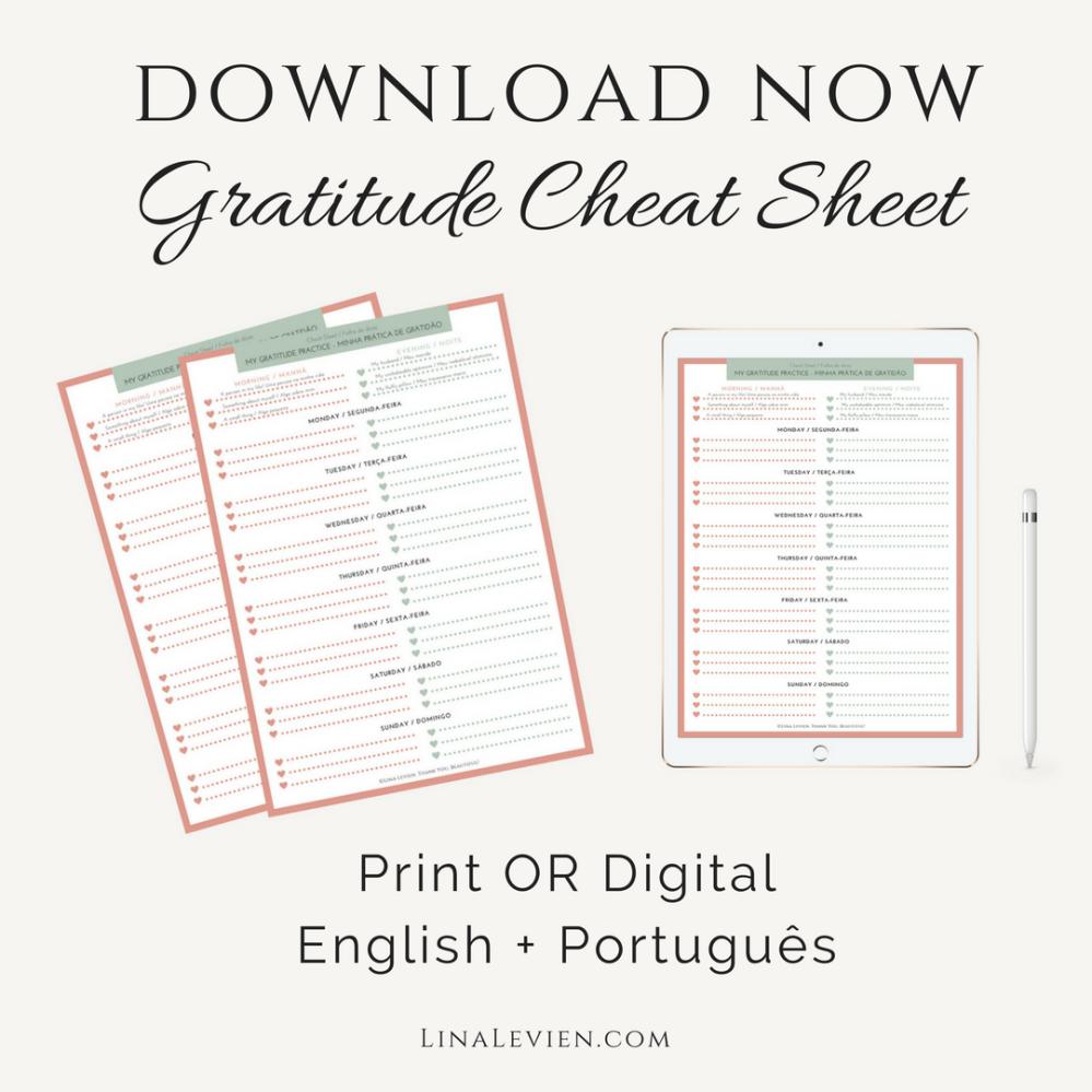 lina-levien-gratitude-cheat-sheet-blog