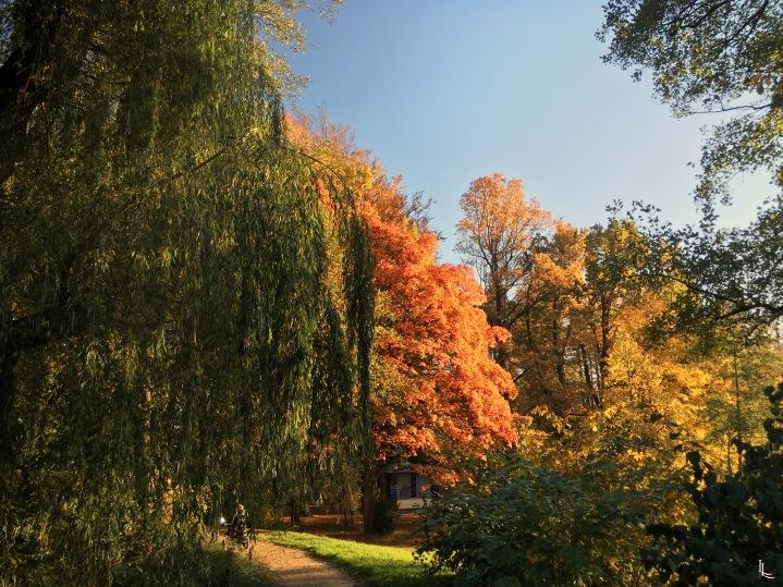 lina-levien-autumn-fall (12)