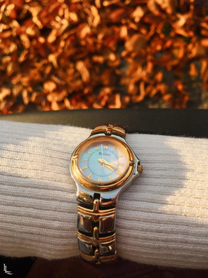 lina-levien-autumn-fall (14)