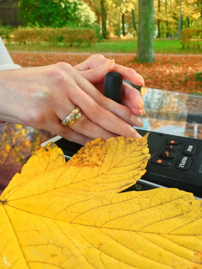 lina-levien-autumn-fall (15)