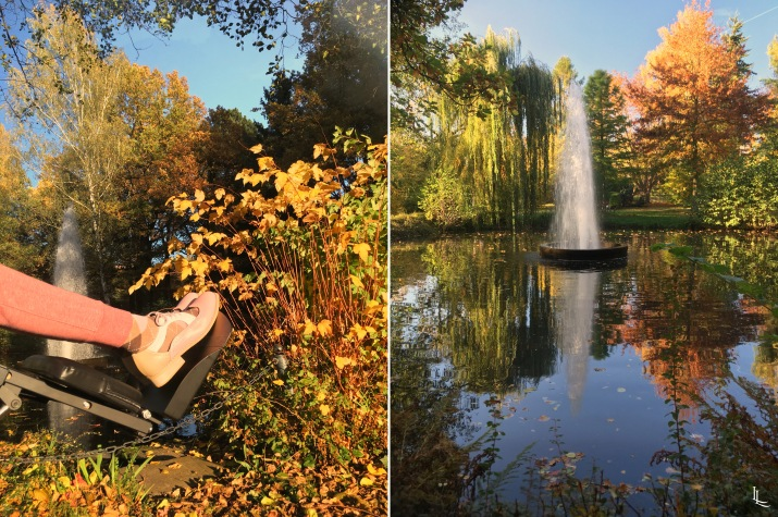 lina-levien-autumn-fall (4)