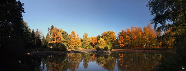 lina-levien-autumn-fall-panorama