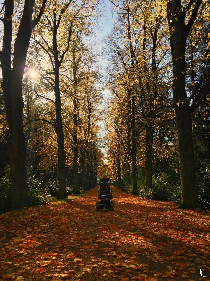 lina-levien-autumn-fall