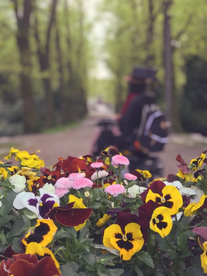 lina-levien-sakura-outfit